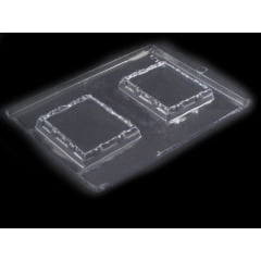 Forma de Acetato Porta Retrato N1211 Nishimoto