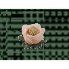 Forminha de Tela para Doces Rainha Rosa Nude 22033 c/ 30 unidades – Decora Doces
